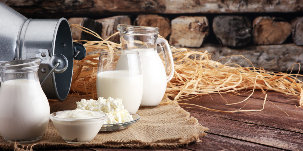 Milk, Meat of the Word and the Agribusiness Model by James Huskins