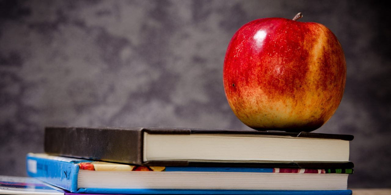 """It's That Time Again…""""Back to School"""" by Michelle Barrier"""