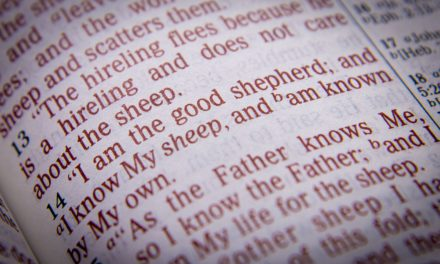 The Good Shepherd | Tracy Jessup