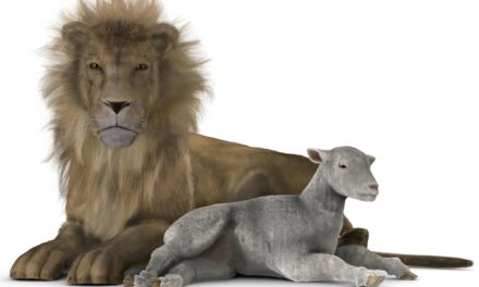 In Like a Lion, Out Like a Lamb | Bruce Cannon