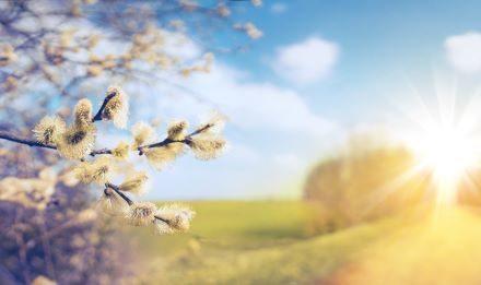Seasons of Our Lives | Doug Harrell