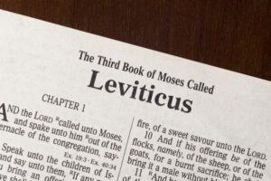 the beauty of dull leviticus marlene houk blue ridge christian news