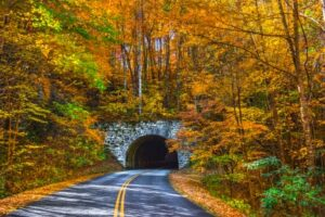 fall colors and tunnel in NC